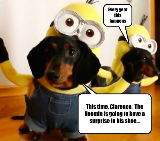 costume dogs halloween caption funny - 8577352192