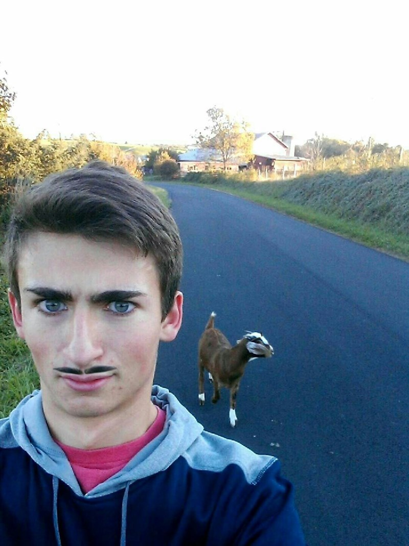 photoshop goats selfie Phew, Someone Put the Eyebrows Back Where They Belong