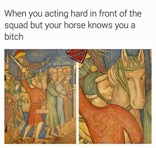 funny memes your horse knows