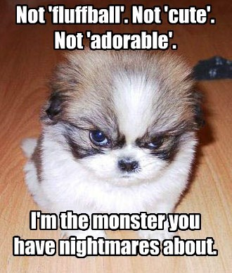 fluffball,adorable,puppy,not,caption,nightmares,monster