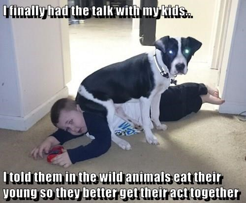 animals behavior dogs kids caption the talk funny - 8577769984
