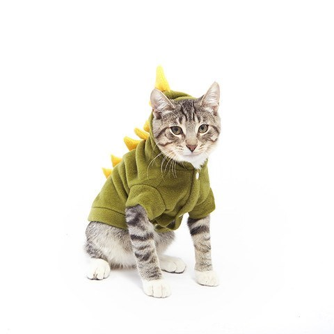 cats halloween costume I Dino Who I am Anymore