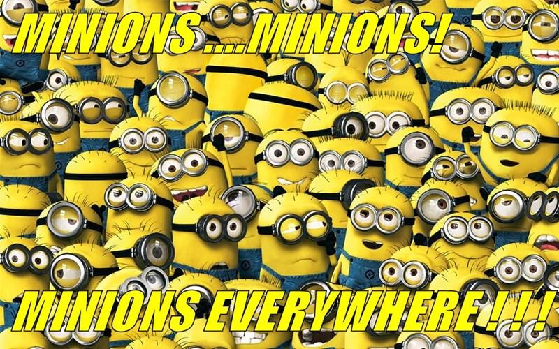 MINIONS ....MINIONS!   MINIONS EVERYWHERE ! ! !