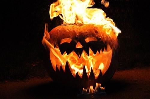 halloween memes burning pumpkin