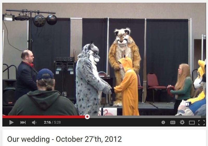 funny memes furry wedding