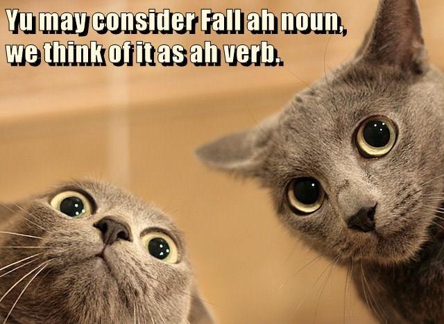 Yu may consider Fall ah noun,                                                                                                                                                            we think of it as ah verb.