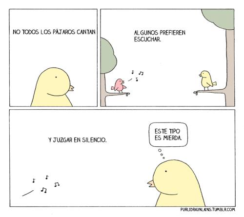 pajaros que escuchan
