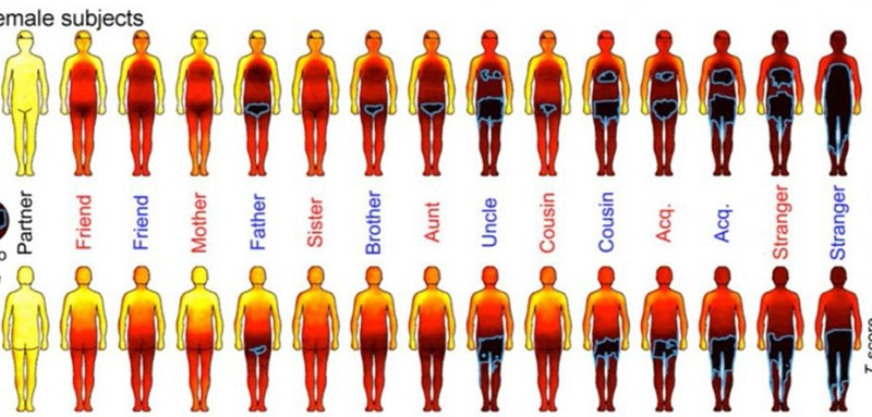 Science of The Day: Study Shows Humans Really Hate Being Touched Anywhere by Strangers
