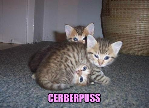 Be... mildly apprehensive...