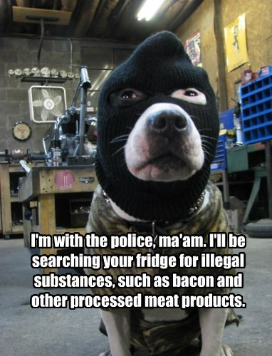 I'm with the police, ma'am. I'll be searching your fridge for illegal substances, such as bacon and other processed meat products.