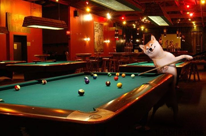 dogs photoshop battles Oh, Now He's a Pool Shark?