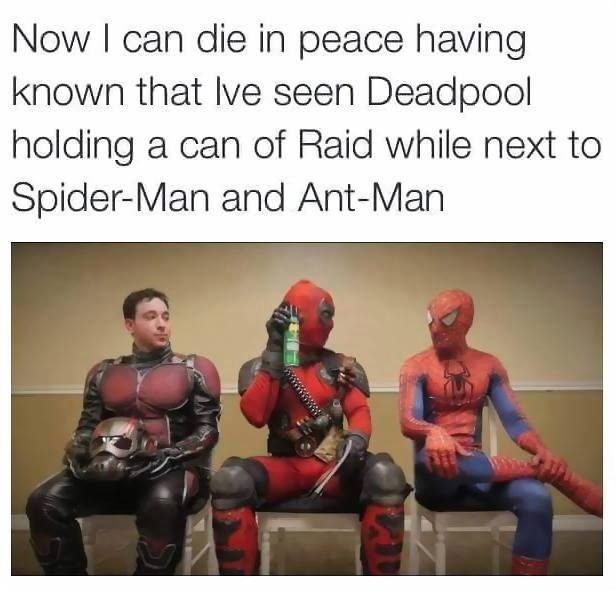 spider man ant man deadpool That Seems Dangerous