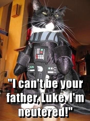 """""""I can't be your father, Luke. I'm neutered!"""""""