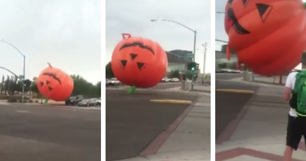 Spoopy of The Day: This Giant Inflatable Pumpkin is Wrecking Havoc on Arizona