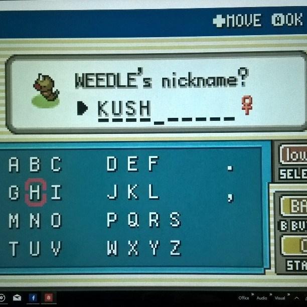 pokemon memes weedle kush