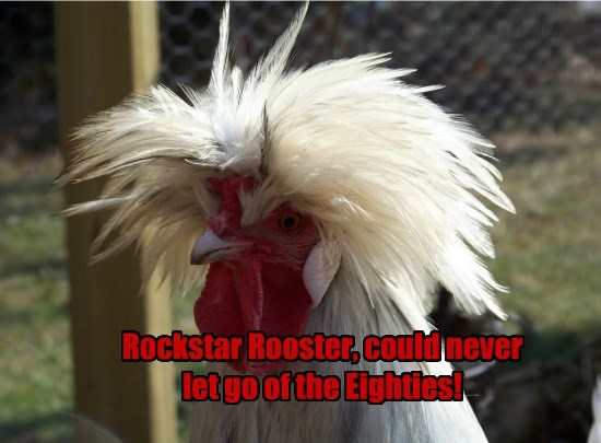 Rockstar Rooster, could never let go of the Eighties!