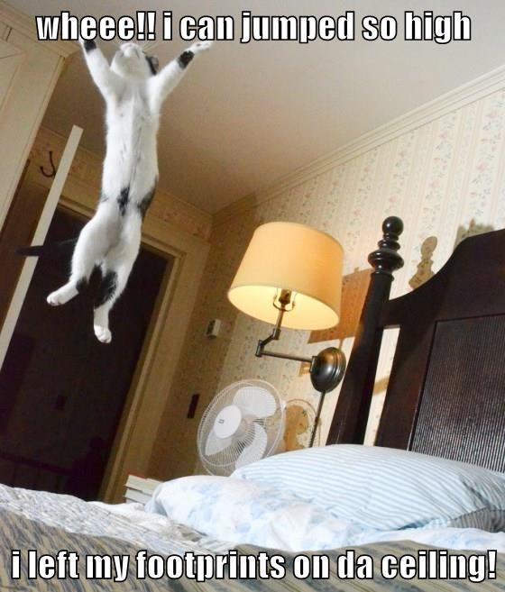 wheee!! i can jumped so high  i left my footprints on da ceiling!