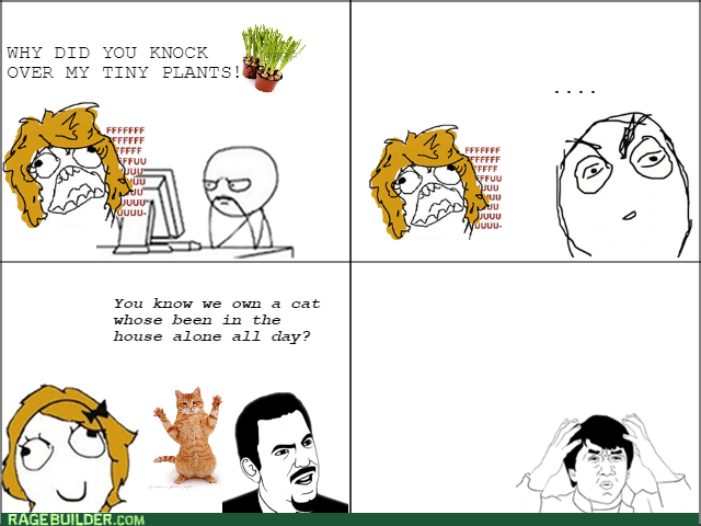 plants pets Cats - 8581259008