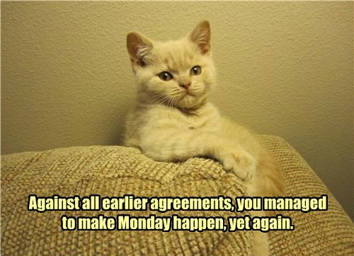 earlier,cat,again,agreements,monday