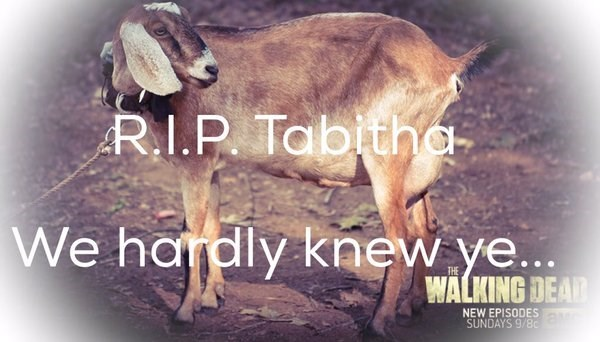 Forget Glenn, What About Tabitha?