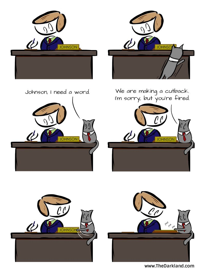 cats work web comics You May Now Scratch My Head if It Will Make You Feel Better