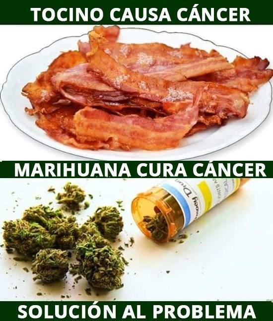 tocino causa cancer