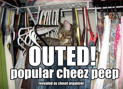 cat popular closet organizer caption outed - 8581804032