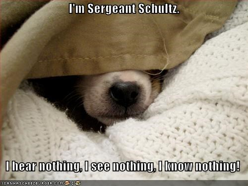 Im Sergeant Schultz I Hear Nothing I See Nothing I Know Nothing