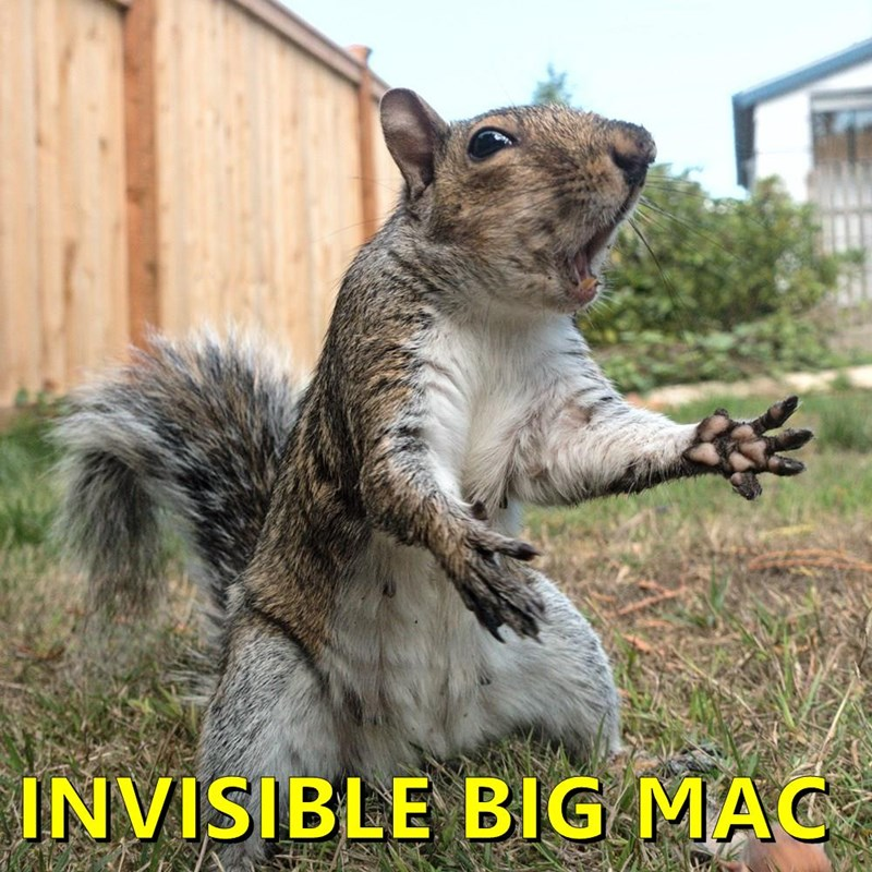 INVISIBLE BIG MAC