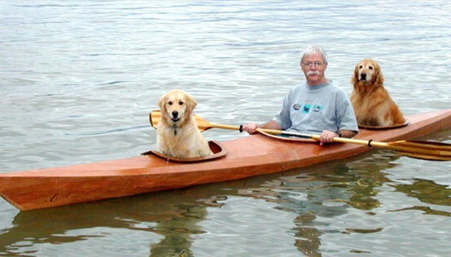 dogs kayak image This Man Loved Taking His Dogs on Adventures So Much That He Built a Kayak to Take Them Along