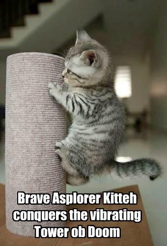 Brave Asplorer Kitteh conquers the vibrating Tower ob Doom