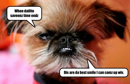 dogs,best,daylight savings,ends,caption,smile