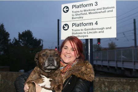 dogs fireworks train Thanks to Some Helpful Passengers and Train Officials, Buddy Was Reunited With