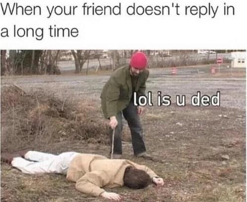 funny memes lol is u ded