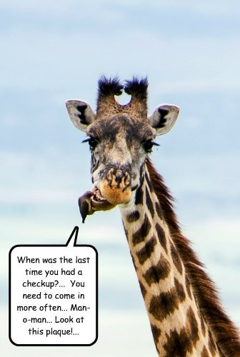 dentist bird funny giraffes - 8582444800