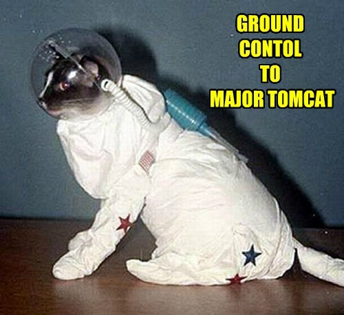 GROUND CONTOL  TO  MAJOR TOMCAT