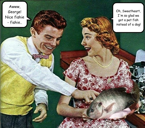 Awww, George! Nice fishie - fishie..