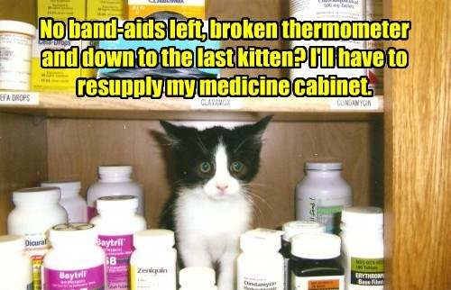 No band-aids left, broken thermometer and down to the last kitten? I'll have to resupply my medicine cabinet.
