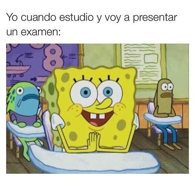 estudio para el examen