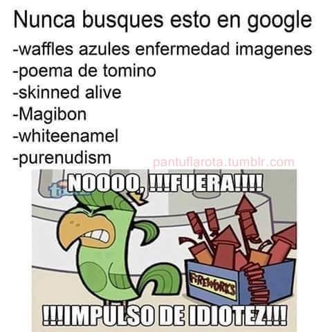 no buscar en google
