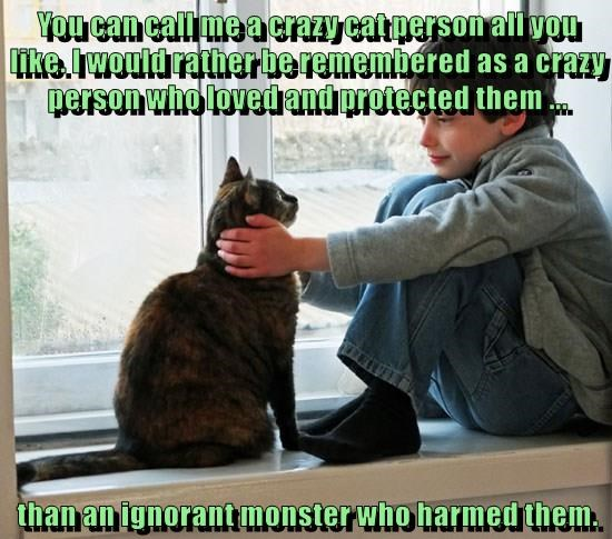 You can call me a crazy cat person all you like. I would rather be remembered as a crazy person who loved and protected them ...  than an ignorant monster who harmed them.