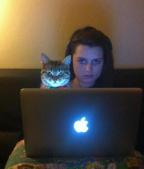 funny cats image Do You Mind?
