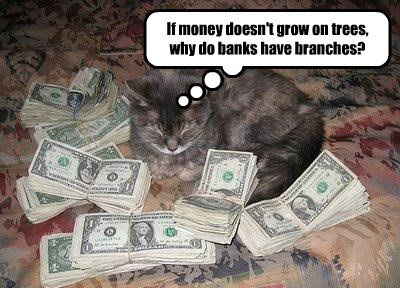 branches Cats banks doesnt caption money trees grow