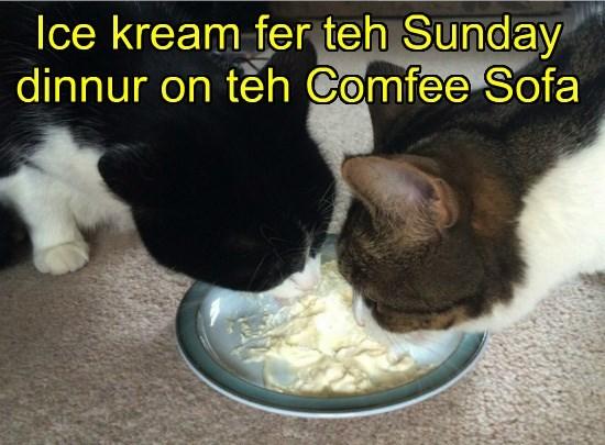 Ice kream fer teh Sunday dinnur on teh Comfee Sofa