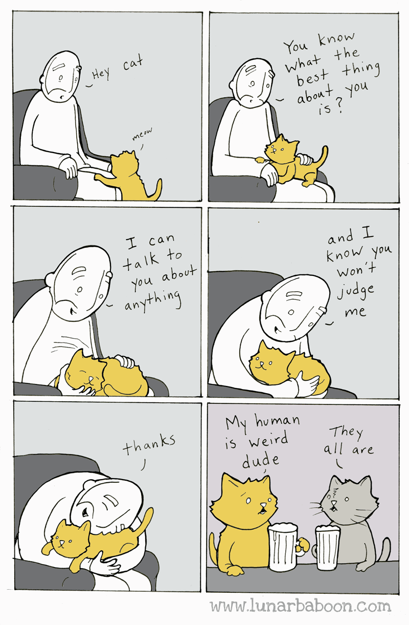 cats web comics You Won't Believe What He Told Me Today