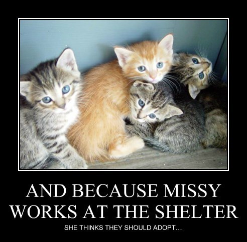 AND BECAUSE MISSY WORKS AT THE SHELTER