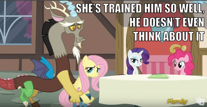 discord what about discord fluttershy - 8583638016