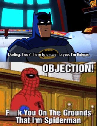 batman spiderman Can't Argue With That Logic