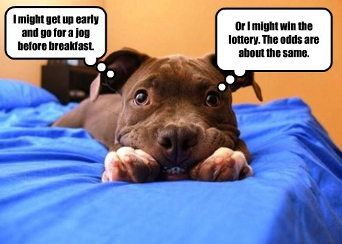 I might get up early and go for a jog before breakfast. Or I might win the lottery. The odds are about the same.