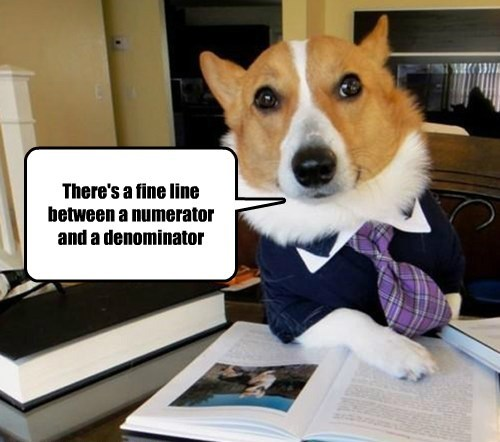 denominator dogs fine line numerator caption - 8583978752